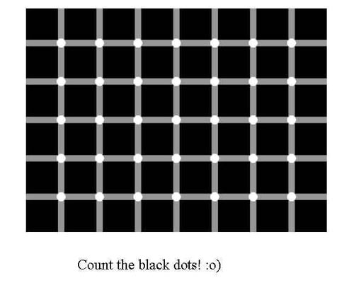 white dots appear black optical  illusion