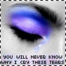 you will never know why i cry these tears