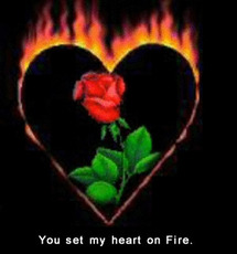 you set my heart on fire
