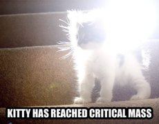 kitty has reached critical mass