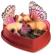 fairy cats sleeping in chocolate box