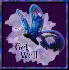 get well butterfly