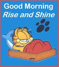 good morning rise and shine garfield