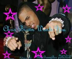 chris brown wants you
