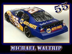 michael waltrip 55
