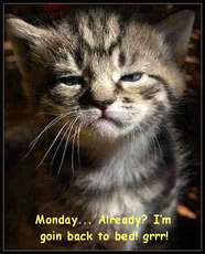 monday already i'm going back to bed