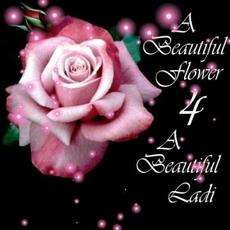 a beautiful flower 4 a beautiful ladi