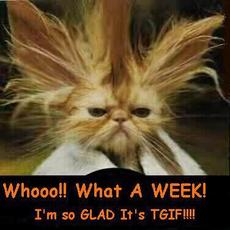 what a week i'm so glad it's tgif