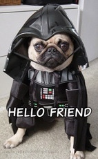hello friend dog in darth vader costume