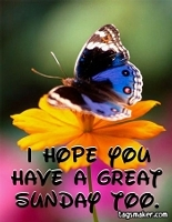i hope you have a great sunday too